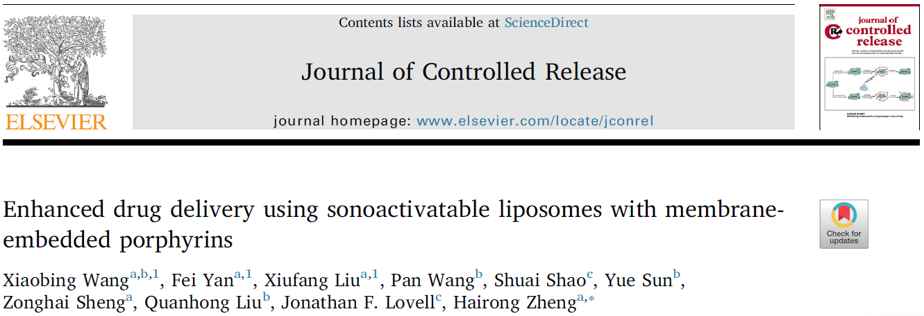 Enhanced drug delivery using sonoactivatable liposomes with membrane-embedded porphyrins