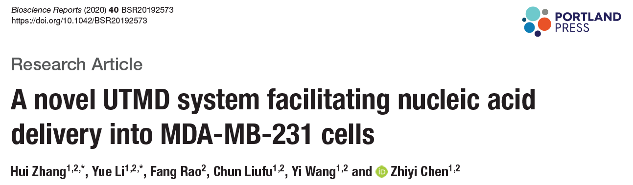 A novel UTMD system facilitating nucleic acid delivery into MDA-MB-231 cells