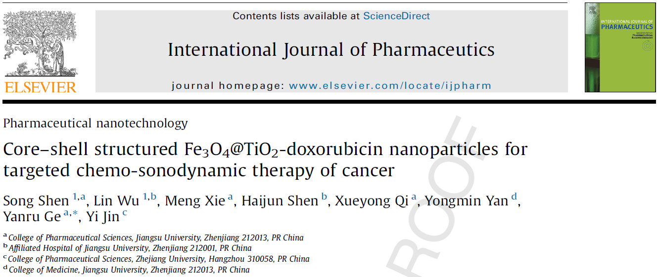 Core–shell structured Fe3O4@TiO2-doxorubicin nanoparticles for targeted chemo-sonodynamic therapy of cancer