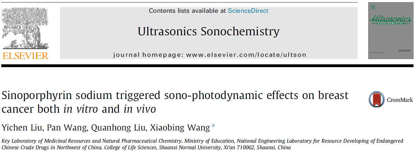Sinoporphyrin sodium triggered sono-photodynamic effects on breast cancer both in vitro and in vivo