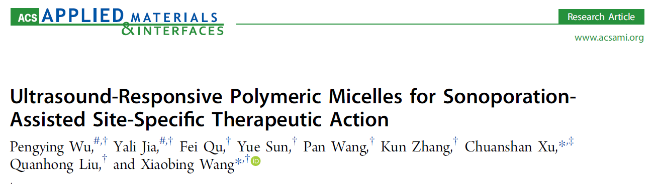 Ultrasound-Responsive Polymeric Micelles for Sonoporation-Assisted Site-Specific Therapeutic Action