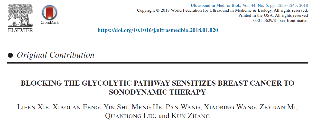 BLOCKING THE GLYCOLYTIC PATHWAY SENSITIZES BREAST CANCER TO SONODYNAMIC THERAPY