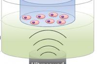 Core-shell