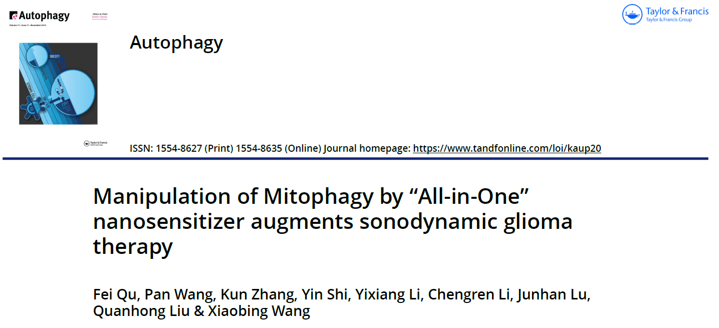 "Manipulation of Mitophagy by ""All-in-One"" nanosensitizer augments sonodynamic glioma therapy-1"
