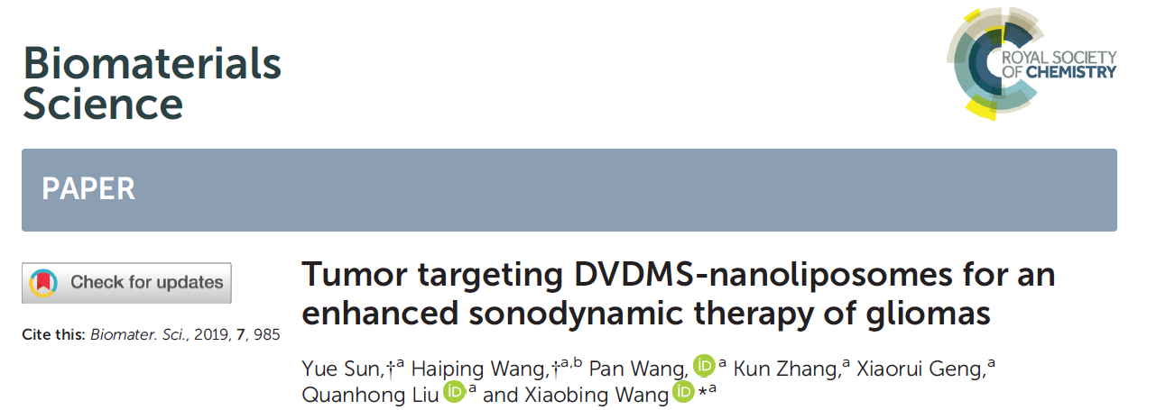 Tumor targeting DVDMS-nanoliposomes for an enhanced sonodynamic therapy of gliomas